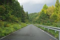 道なき道1.jpg