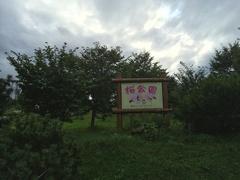 道の駅 おうむ桜公園.jpg