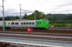 道の駅 しりうち 白鳥.jpg