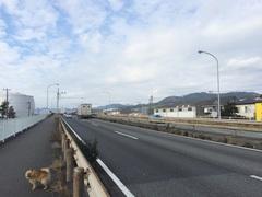 道の駅 富士ここからほぼ自動車専用道.jpg