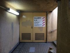 道の駅 富士地下道.jpg