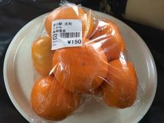 道の駅 庄和(春日部市)みかん150円 .jpg