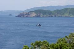 遠くに由良半島と小島に渡し船.jpg