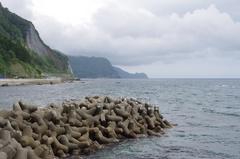 遠くに矢越岬.jpg
