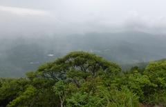 金峰山山頂鹿児島湾方向.jpg