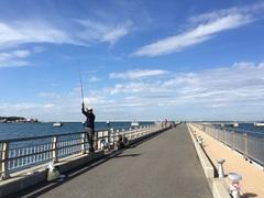釣り日和な夕日桟橋.jpg