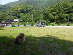 間越海岸芝生で休憩.jpg