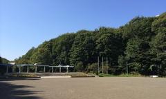 青葉中央公園.jpg
