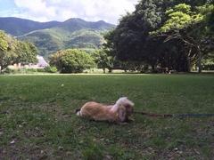 須の川公園ラヴィ.jpg