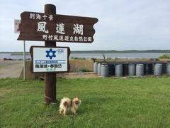 風蓮湖走古丹漁港カール.jpg