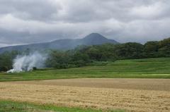 飯森山野焼き.jpg