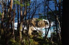 魹ヶ崎(とどがさき)の高い場所から下.jpg