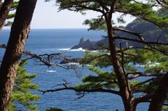 魹ヶ崎(とどがさき)の高い場所から小根ケ崎.jpg