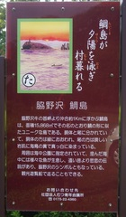 鯛島解説.jpg