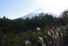 鳴沢村から富士山.jpg
