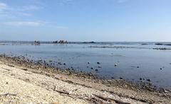 鵜の崎海岸.jpg
