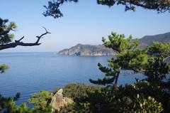 黄金崎富士見の丘から.jpg
